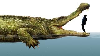 Животные-гиганты жившие 500,000,000 лет назад.