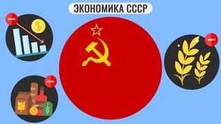 Что не так с советской экономикой ?
