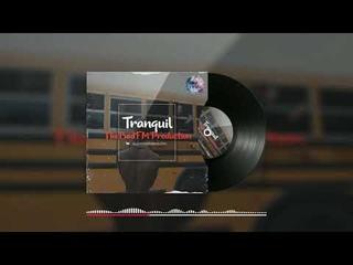 "[FREE] ""Tranquil"" Southside x Metro Boomin x 808 Mafia Type Beat"