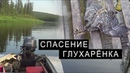 СПАСЕНИЕ ГЛУХАРЁНКА.