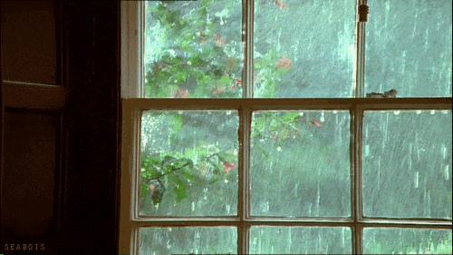 Суббота будет тёплой и дождливой. Сегодня синоптики