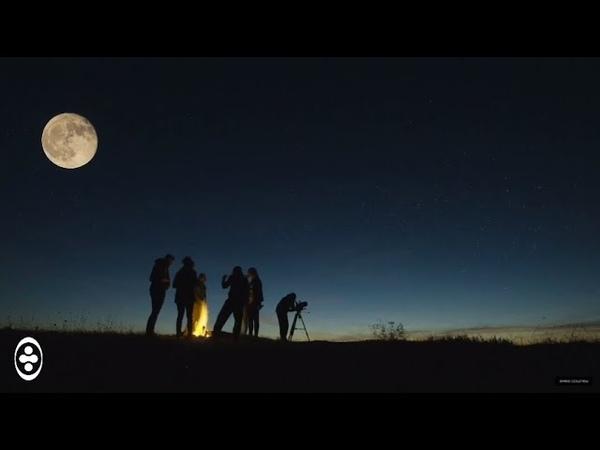 Fonzerelli - Moonlight Party (Greg Downey Remix)