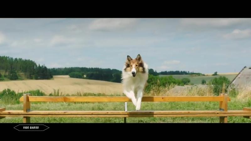 Лесси Возвращение домой русский трейлер 2020 смотреть онлайн новинки кино