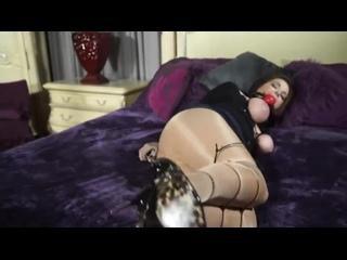 fat ass reverse cowgirl