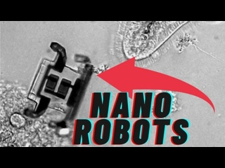 Smallest Robots Ever Made   Micro-robotics (Nanobots)