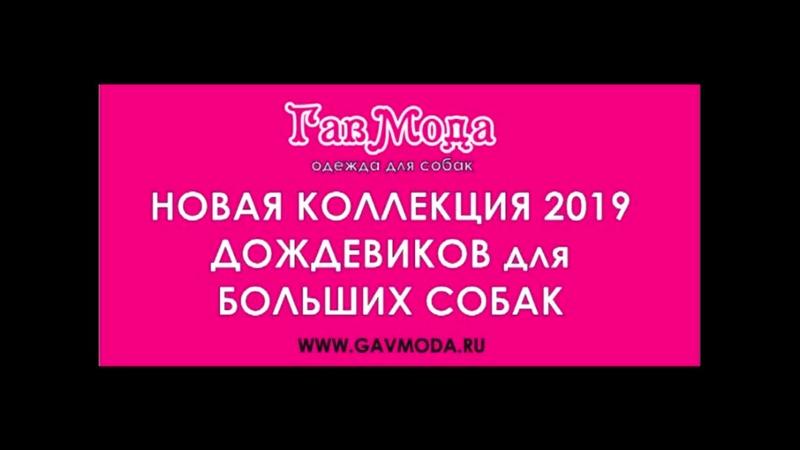 ГавМода - Коллекция 2019 - Дождевики для Больших Собак