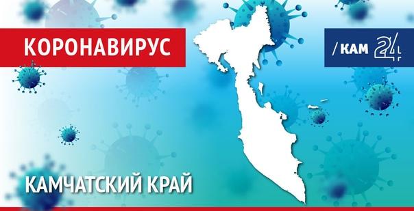 За сутки на Камчатке зарегистрировано еще два случ...