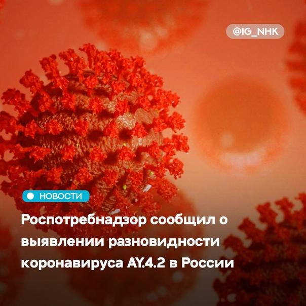 В России выявляются единичные случаи заболевания р...
