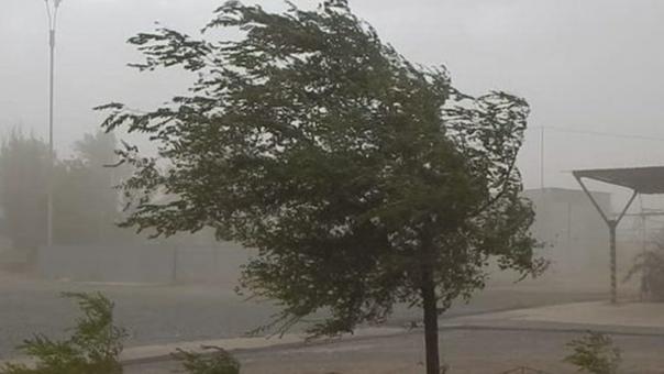 В Смоленской области МЧС объявило штормовое предуп...