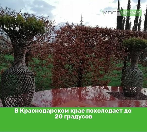 В Краснодарском крае похолодает до 20 градусовНа К...