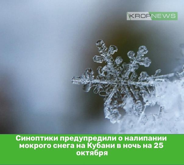 Синоптики предупредили о налипании мокрого снега н...