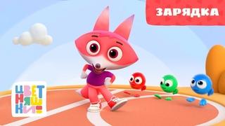 Цветняшки — Зарядка — Серия 13 — развивающий мультик для малышей