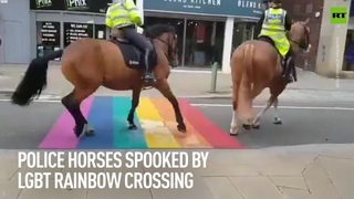 Police horses SPOOKED by LGBT crossing