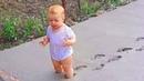 Я Ржал До Слез😂 Приколы / Смешные Видео / Самые смешные младенцы и дети создают большие проблемы