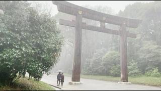 Walking in the Rain in Tokyo: Meiji Jingu Shrine - Rain Sounds, Rain Ambience, White Noise, Thunder